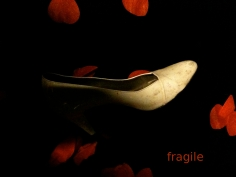 Photo de la série // Photo of the series - « Fragile ! » 2015