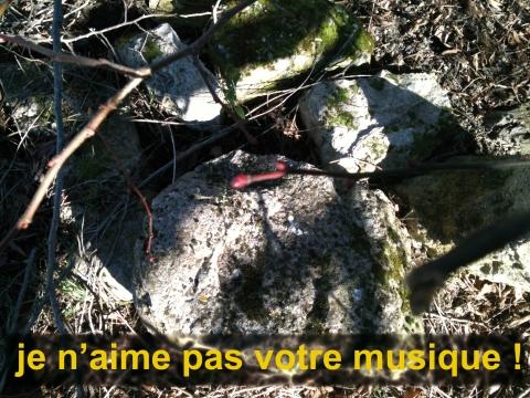 VidéoMusic01