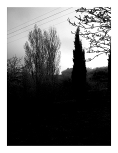 Jour de l'An // New Year's Day #2015 Photo N&B // B&W Picture