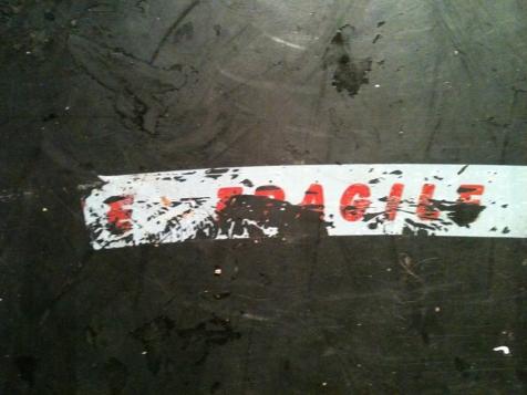 Photo de la série // Photo of the series - « Fragile ! » 2015