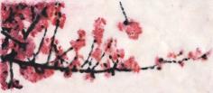 La branche de cerisier (détail) // Cherry tree's branch (detail)