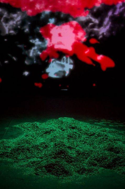 Les poissons ne posent pas de question - Crédit photo Visages Vagabonds 2006