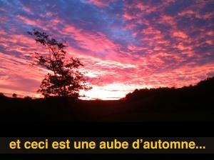 Photograpie de Philippe Pitet