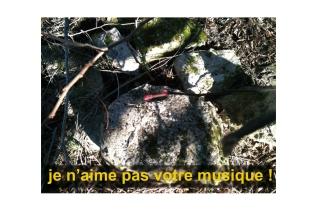 """Photographie de Philippe Pitet Artiste Plasticien Série """"Es ist die Natur"""" - 2008"""