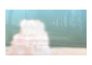 Copie d'écran de la vidéo de Philippe Pitet - No Show #8 - 2018