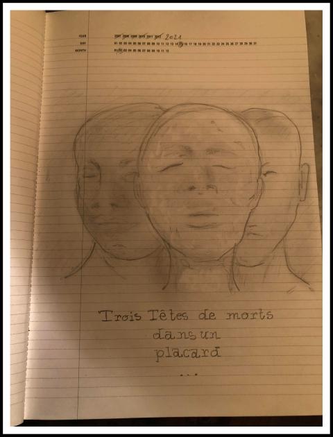 Dessin extrait du carnet de note dessinéesau Muséum d'Histoire Naturelle de Toulouse par Philippe Pitet Artiste Plasticien - Février 2021