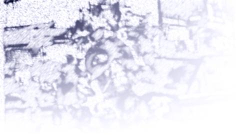 Dessin au crayon mine de graphite puis numérisé, exécuté pour le fond d'écran du site onearm.net
